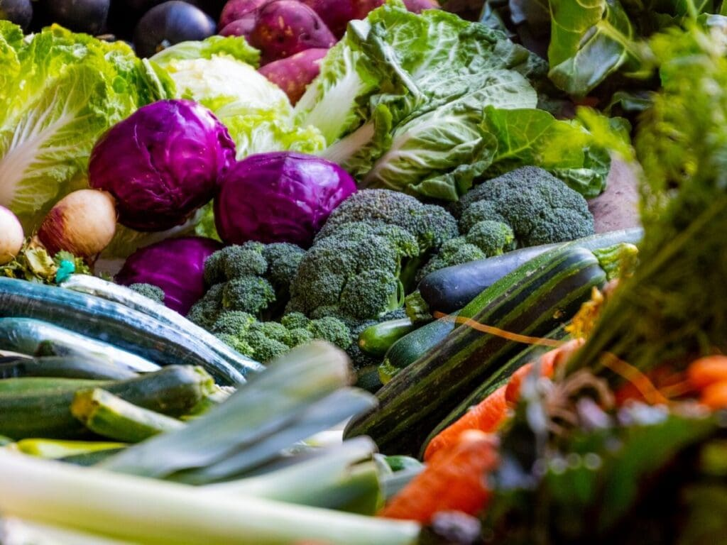 A variety of vegetables, including broccoli, red cabbage, leafy greens, and cucumbers.