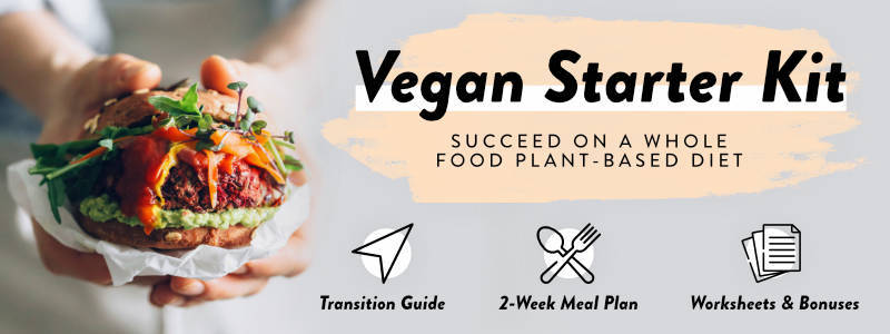 "A hand holding a burger and text that reads, ""Vegan Starter Kit"" along with a description of a meal plan e-book."