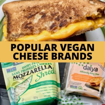 A vegan grilled cheese and two packages of vegan cheese.