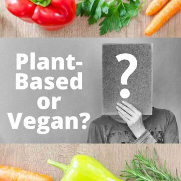 """Text that says, """"Plant-Based or Vegan?"""" next to someone holding up an exclamation point."""